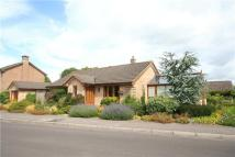 Detached Bungalow for sale in The Drove, Thornford...