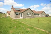 Detached Bungalow for sale in South Hill, Somerton...