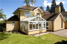4 bedroom Detached home for sale in The Drive, Batts Park...