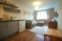new Apartment to rent in The Downs, West Wimbledon