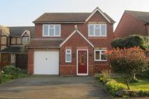 Detached house to rent in Violet Close, Muxton...