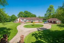4 bedroom Detached home for sale in Wetheringsett...