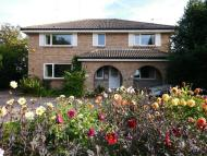 Detached property for sale in Colville Road...