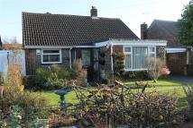3 bedroom Detached Bungalow in Southbourne