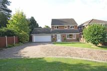 Detached house in Elm Walk, Retford...