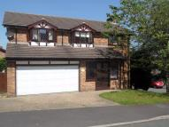Detached property for sale in Springwood, GLOSSOP...