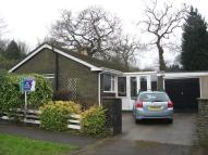 3 bedroom Detached Bungalow to rent in Laburnum Way...