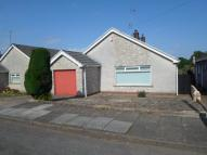 3 bed Detached Bungalow to rent in Ty Pica Drive, Wenvoe...