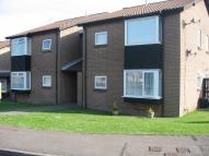 1 bed Studio flat to rent in Glenbrook Drive, Barry...