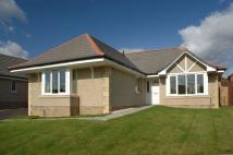 Detached Bungalow for sale in The Avenue...