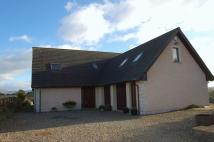 Detached property for sale in Braxfield Road, Lanark