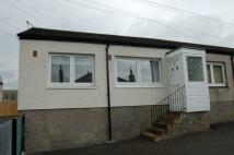 1 bedroom Bungalow for sale in Kildare Drive, Lanark