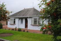 Detached Bungalow in 53 Station Road...