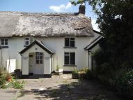 Cottage to rent in Chapel lane Follygate