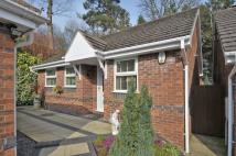 Detached Bungalow in Lords Lane, The Oval...
