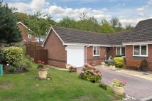 2 bed Semi-Detached Bungalow for sale in Lords Lane, Stourton...