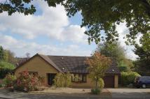 Detached Bungalow for sale in Gurston Rise...