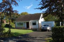 Bungalow in Olive Lodge Sorn, KA5