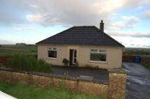 Detached Bungalow to rent in Rural Bungalow