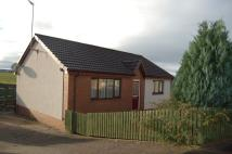 Truesdale Crescent Detached Bungalow for sale