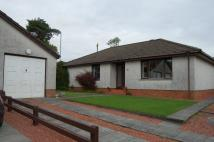 Detached Bungalow in Westside Gardens...