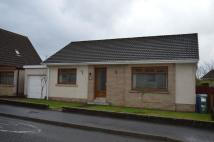 Detached Bungalow for sale in Banfield Drive, Cumnock...