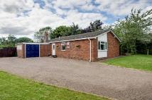 3 bedroom Detached Bungalow in Hanley Broadheath...