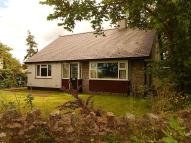 Detached Bungalow in RHOSCEFNHIR