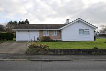 Detached Bungalow to rent in Llangefni...