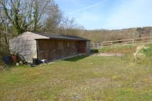 Equestrian Facility home for sale in Llangoed, Beaumaris...