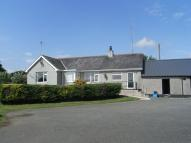 Detached Bungalow in Bodffordd