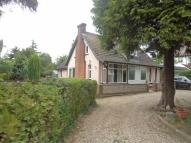 Spring Lane Detached house to rent