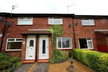 Bluebell Meadow Terraced property for sale