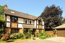 5 bedroom Detached house for sale in Hollies Close...