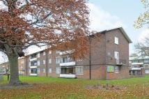 Leigham Court Road Flat for sale