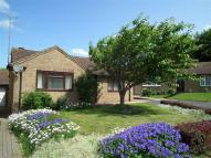 Detached Bungalow for sale in Whitbred Close, Swindon...