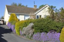 5 bed Detached Bungalow for sale in Chestnut Springs...
