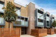 new development to rent in Townhouse Napier West 3...
