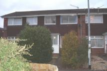 Mile Walk Terraced property to rent
