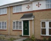 2 bed Terraced house to rent in Coriander Drive...