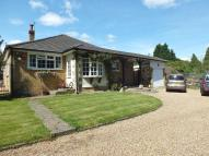 Detached Bungalow in Well Hill, Orpington