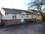 3 bedroom Detached Bungalow to rent in Erles Road, Liphook