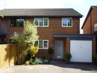 semi detached house to rent in Grayswood