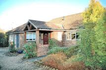 Detached Bungalow to rent in Headley