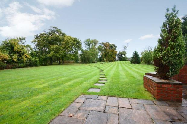Expanse Of Lawn