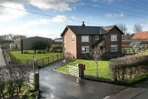4 bedroom new house for sale in Hornbys Farm, Gorse Lane...