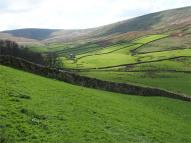 Farm Land for sale in Gayle, Hawes...