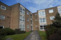 1 bed Flat to rent in Leicester Close