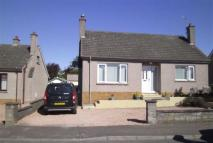 Detached Bungalow to rent in Edenbank Road, Cupar...