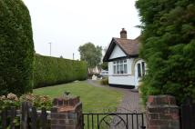 Detached Bungalow to rent in SOMERSET AVENUE...